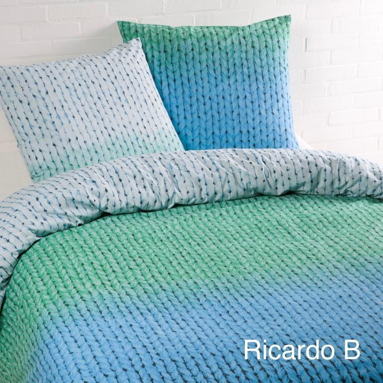 Ricardo B
