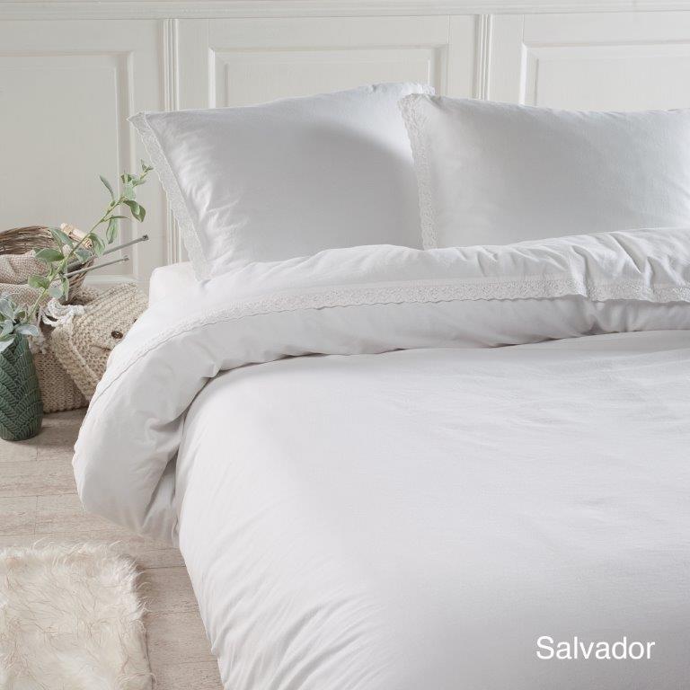 Salvador wit